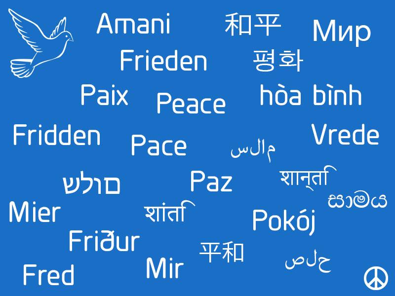 Eine Welt Laden Weißwasser Für Frieden